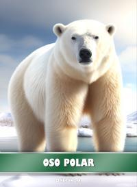 Cromo 1. Oso polar