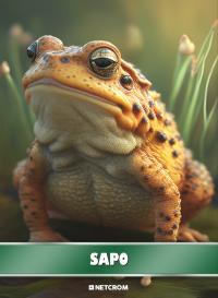 Tiburón. Cromo 108