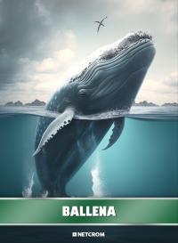 Cromo 148. Mosquito