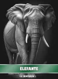 Cromo 27. Rinoceronte