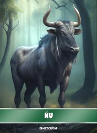 Cromo 30. Leopardo