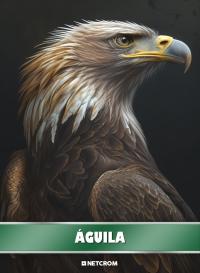 Águila. Cromo 5