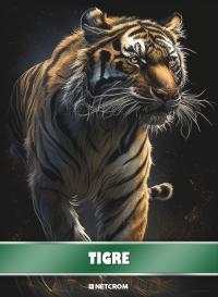Cromo 9. Tigre
