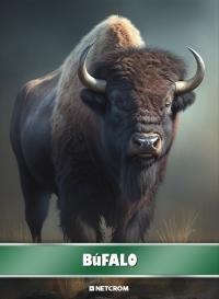 Puma. Cromo 91